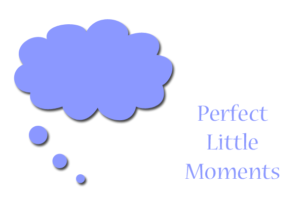 perfectlittlemoments