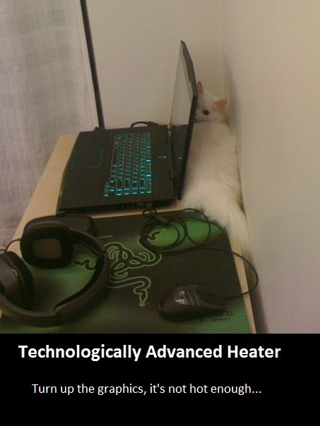 cat_heater