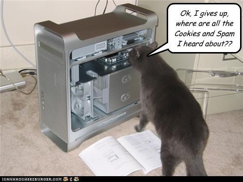 cookiesandspam.jpg