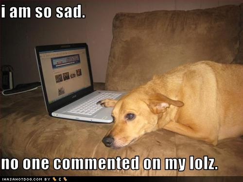funny-dog-pictures-commented-lolz