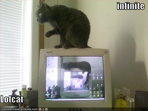 funny-pictures-infinite-lolcat