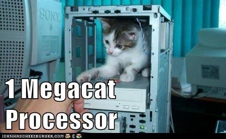 megacat-processor