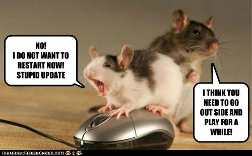 mouse-is-angry-over-restart