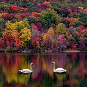 colorful_lake