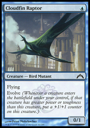 cloudfinraptor
